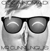 cocainomadi, mr cunnilingus, porno rock, firenze